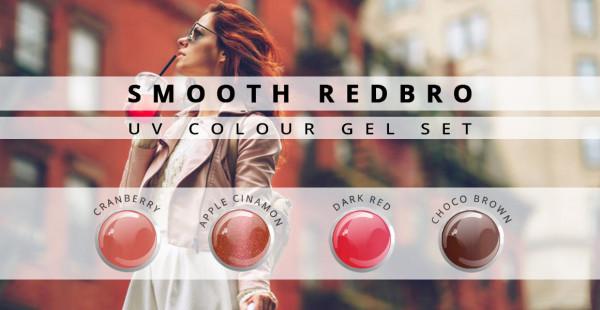 Nails & Beauty Factory Farbgel 4er Set Smooth Redbro Big