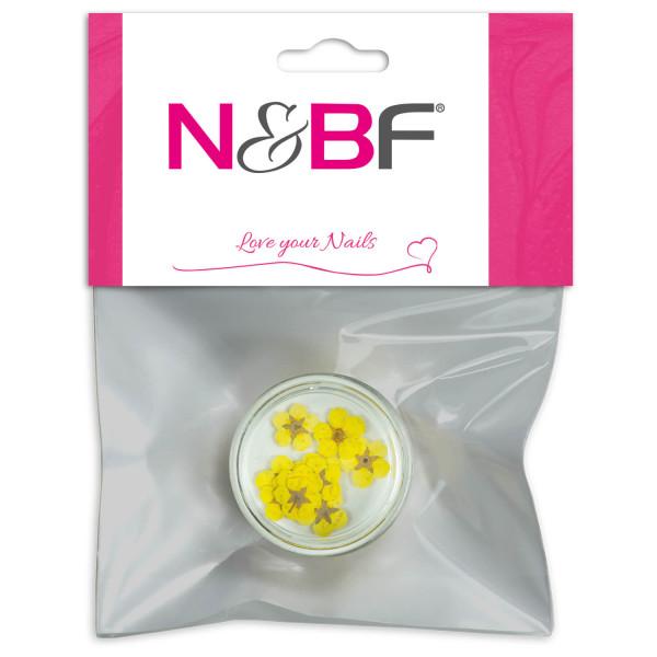Nails-and-Beauty-Factory-Nailart-Trockenblume-Flower-Yellow