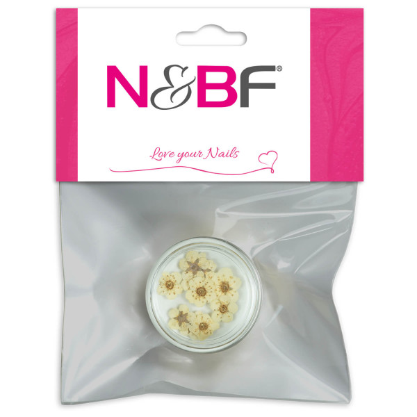 Nails-and-Beauty-Factory-Nailart-Trockenblume-Flower-Light-Cream