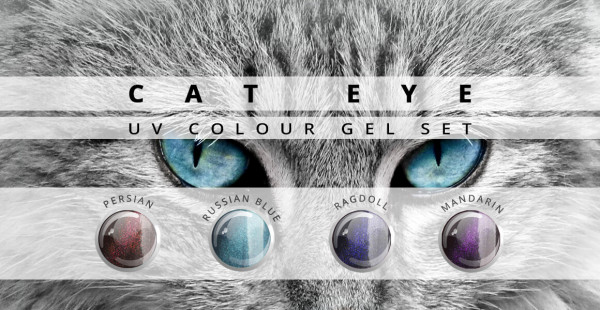Nails & Beauty Factory Cat Eye Farbgel 4er Set