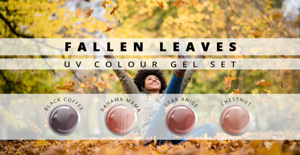 Nails and Beauty Factory Color Gel Set Fallen Leaves