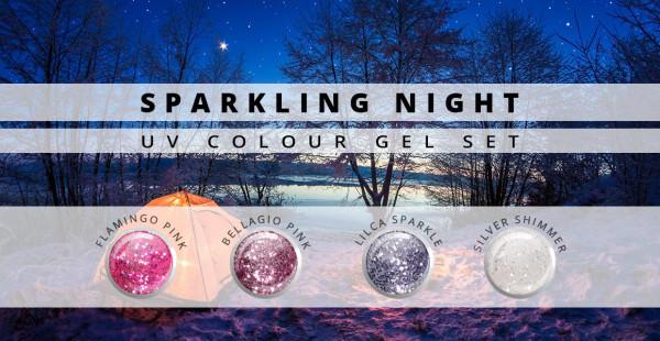 Nails & Beauty Factory Farbgel 4er Set Sparkling Night