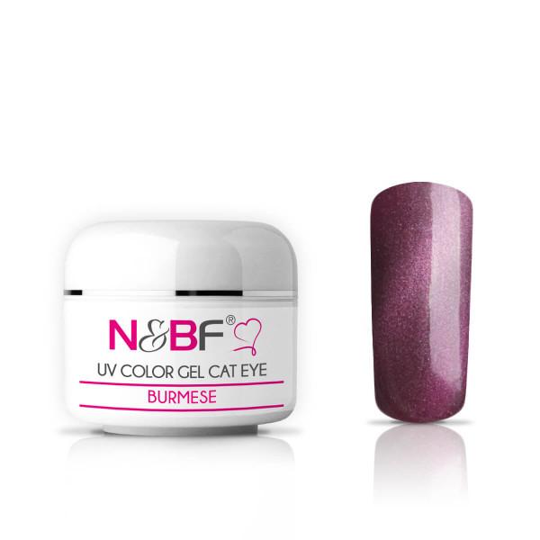 Nails-Beauty-Factory-UV-Color-Gel-Cat-Eye-Burmese-5-ml
